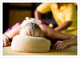 Massage Therapy school subjects art